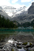 Lake O'Hara, Canadian Rockies - 0298